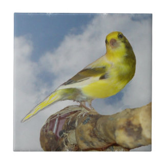Canary Small Square Tile