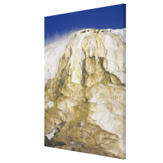 Canary Spring, Mammoth Hot Springs, Yellowstone Na Canvas Prints