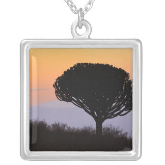 Candelabra Tree silhouetted at sunrise, Square Pendant Necklace