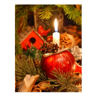 Candlelight under the Pine Tree Postcard