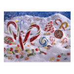 Candy Cane forest Postcard