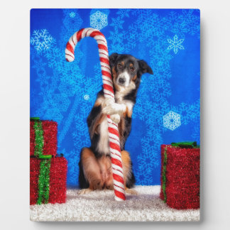 Candy Cane lover Photo Plaque
