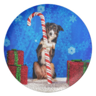 Candy Cane lover Plate