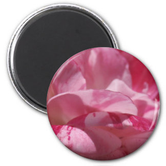 Candy Cane Petals 6 Cm Round Magnet