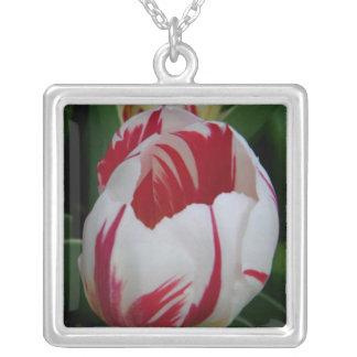 Candy Stripe Tulip Necklace