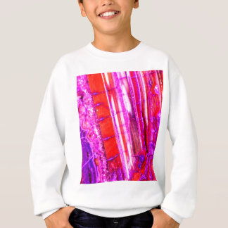 Candy Striped Red & Purple Quartz Sweatshirt