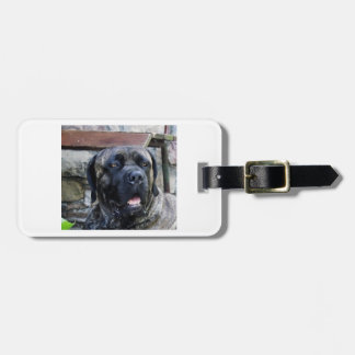 cane corso grey brindle luggage tag