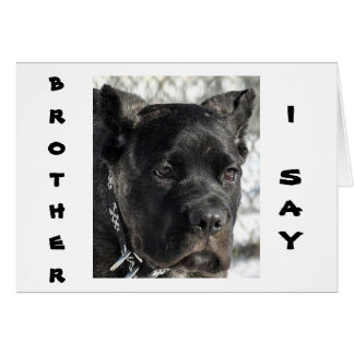 CANE CORSO WANTS TO CELEBRATE BROTHER'S BIRTHDAY CARD