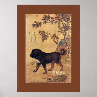 Cangni 苍猊 ~ Tibetan Mastiff ~ Giuseppe Castiglione Poster