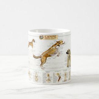 Canine Anatomy Mug