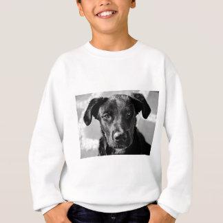 Canine Dog Pet Sweatshirt