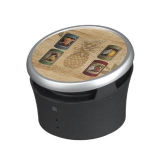 Canned fruit pineapple speaker