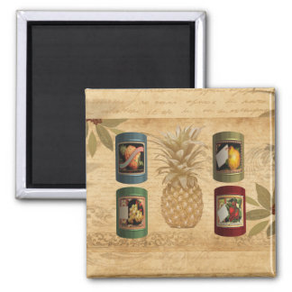 Canned fruit pineapple square magnet