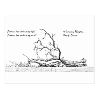 Cannot Live Without My Soul Wuthering Heights Postcard