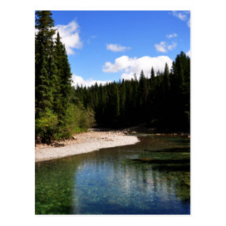 Canoe Meadows Kananaskis Postcard
