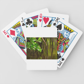 Canoeing Through Quiet Mangroves Bicycle Playing Cards