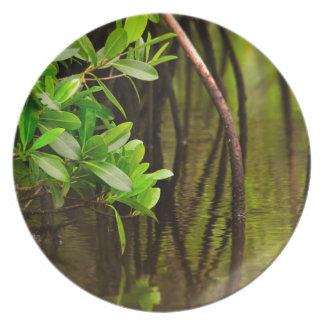 Canoeing Through Quiet Mangroves Plate