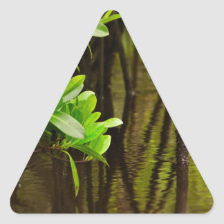 Canoeing Through Quiet Mangroves Triangle Sticker