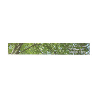 Canopy of Spring Leaves Green Nature Scene Wrap Around Label