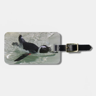 Can't Get Mad at Looking at a Penguin! Bag Tag