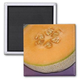 Cantaloupe Magnet