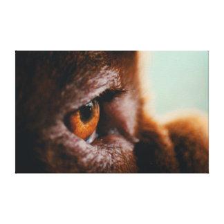 Canvas 30x30 French Mastiff Eye Macro