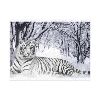 Canvas Art White Tiger