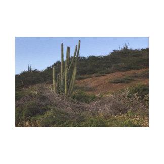 Canvas cactuses.