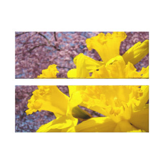 Canvas Fine Art Prints Daffodils Flowers Gallery Wrapped Canvas