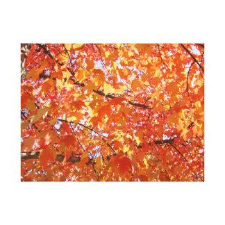 Canvas Fine Art Prints Fall Tree Leaves Orange Stretched Canvas Print