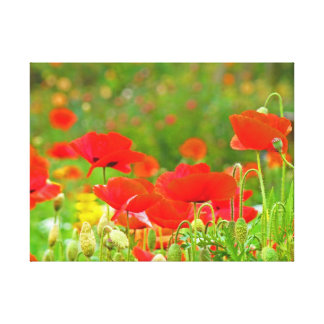 Canvas Fine Art Prints Floral Red Poppies Flowers Canvas Print
