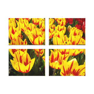 Canvas panel Fine art prints Yellow Tulip Flowers Gallery Wrapped Canvas
