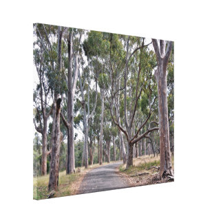 Canvas Print - Forest Path