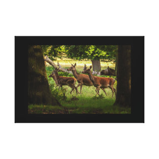 canvas print image deer running through forest