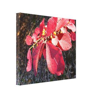 Canvas Print - Ruby Leaves