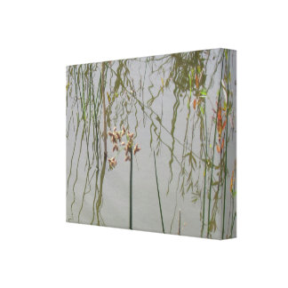 Canvas Print  - Water Reflections