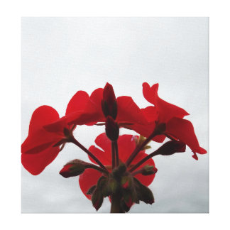 Canvas - Red Floral