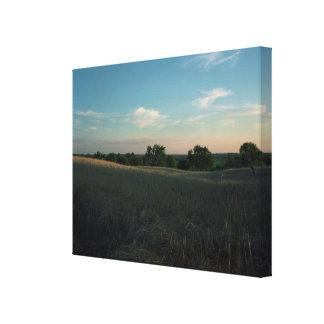 Canvas - Sun Swept Michigan