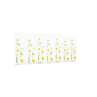 Canvas Wall Art-White Daisies Canvas Print