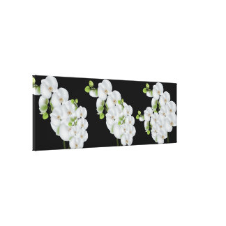 Canvas Wall Art-White Orchids