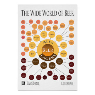 Canvas Wide World of Beer Infographic Print