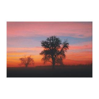 Canvas Winter Sunset Tree Silhouette