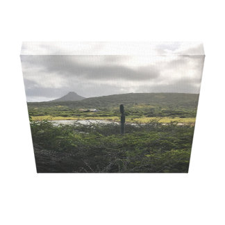 Canvas with cactus in wild