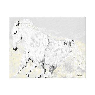 Canvas Wrap White Stallion in Motion
