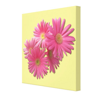 Canvas - Wrapped - Dark Pink Gerbera Daisies Canvas Print