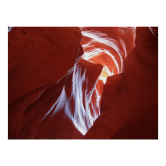 Canyon Art Poster