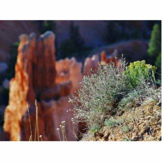 Canyon Landscape Photo Cutouts