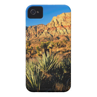 Canyon Red Rock Nevada iPhone 4 Covers