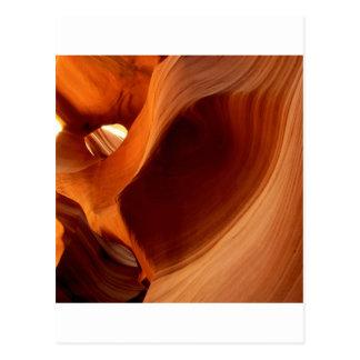 Canyon Watering Hole Antelope Postcard