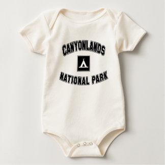 Canyonlands National Park Creeper
